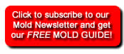 Mold Newsletter Subscription Button
